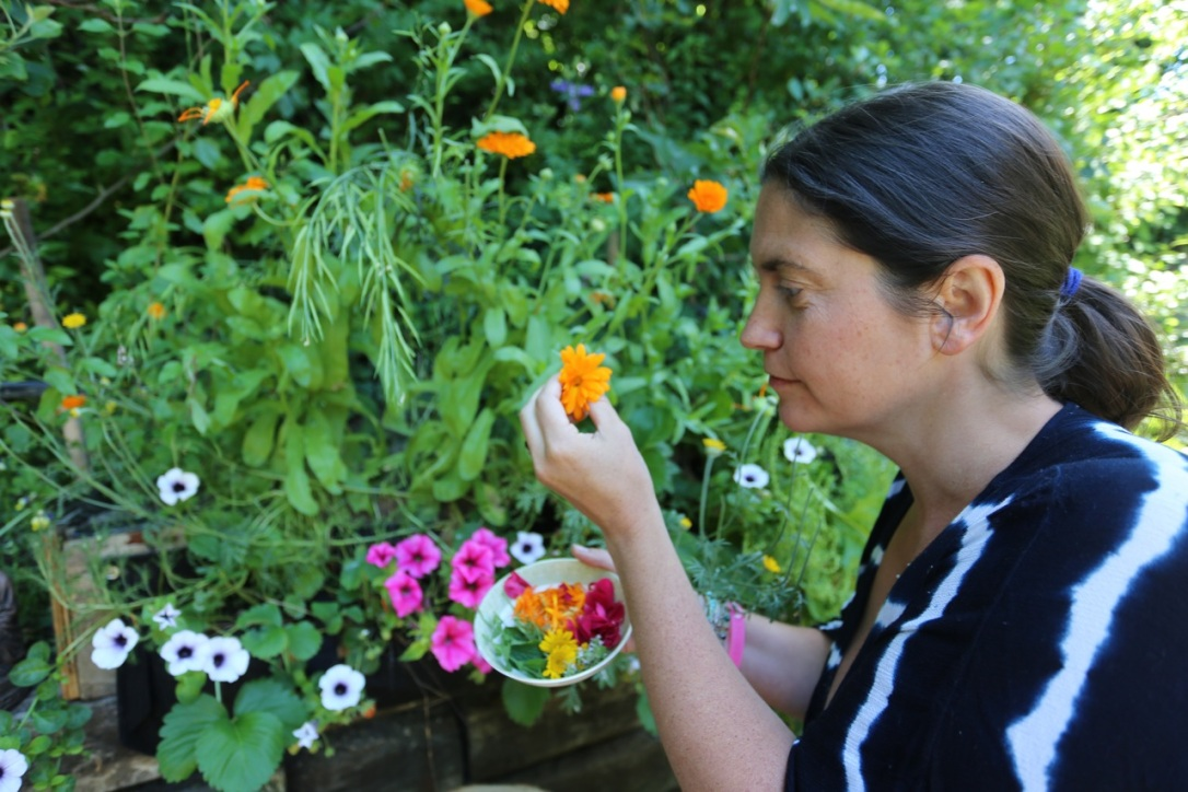 Juliette picking calendula